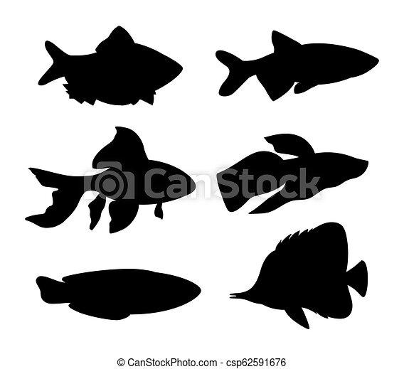 Aquarium Fish Silhouette Set Vector Illustration Aquarium Fish