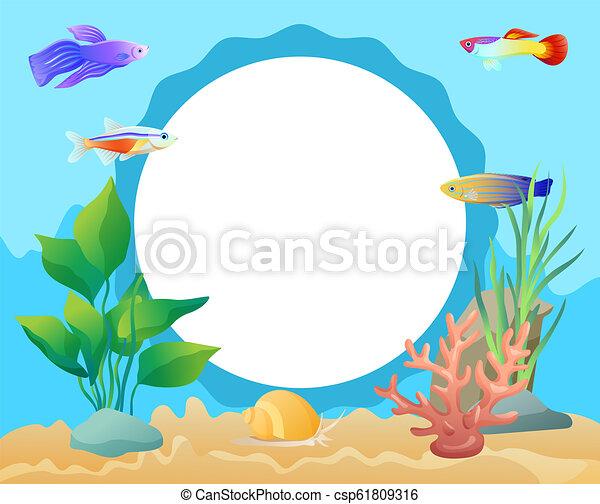 Aquarium Underwater Elements Circle Frame for Text - csp61809316