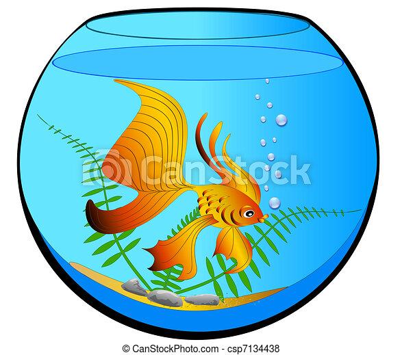 illustration aquarium with gold fish and algae vector search clip rh canstockphoto com clipart aquarium gratuit aquarium clip art free