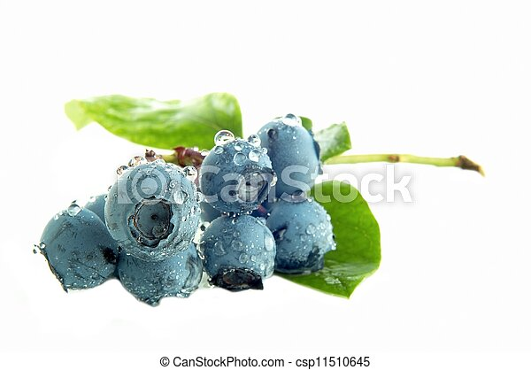 Blueberry - csp11510645
