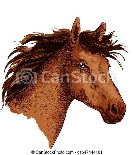 Arabian Brown Wild Horse Head Vector Sketch Symbol Horse Or Wild
