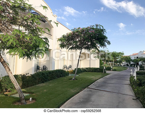 Arabian Muslim white stone buildings, cottages, houses on a background of tropical greenery of the trees with leaves and plants in the resort and a stone walkway against the blue sky. - csp59262568