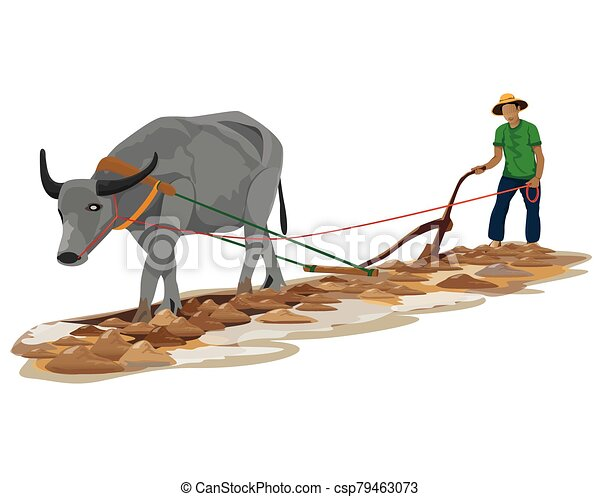 arado, vetorial, desenho, agricultor - csp79463073
