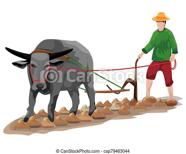 arado, vetorial, desenho, agricultor - csp79463044