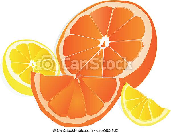Arance Limoni Illustrazione Sapori Limoni Dolce Dimezzato