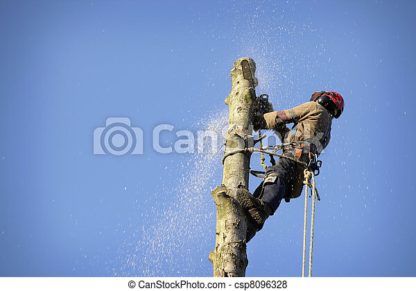 Arborist cutting tree - csp8096328