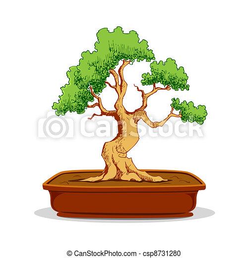 Arbre bonzaies bonsai pot arbre illustration fond - Dessin bonzai ...