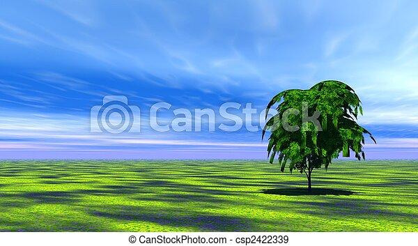 arbre, herbe, vert - csp2422339