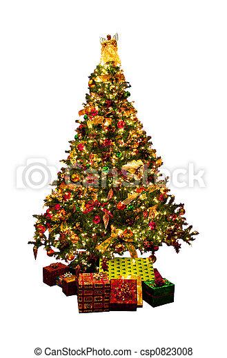 arbre, isolé, noël - csp0823008
