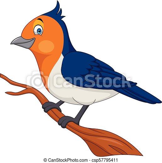 Arbre Oiseau Branche Dessin Anime Dessin Anime Arbre Oiseau