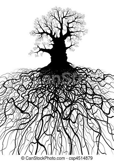 arbre, racines - csp4514879