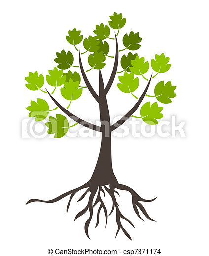 arbre, racines - csp7371174