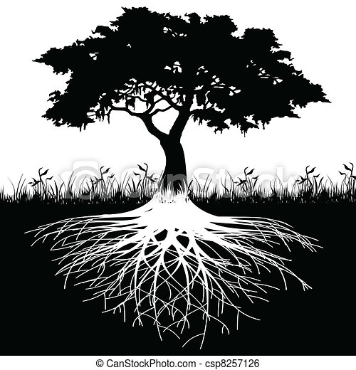 arbre, silhouette, racines - csp8257126