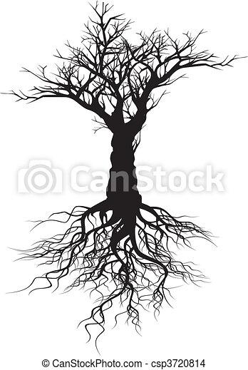 arbre, silhouette - csp3720814
