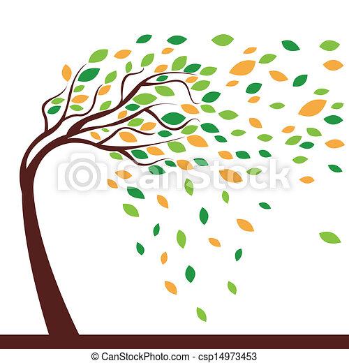 arbre, vent - csp14973453