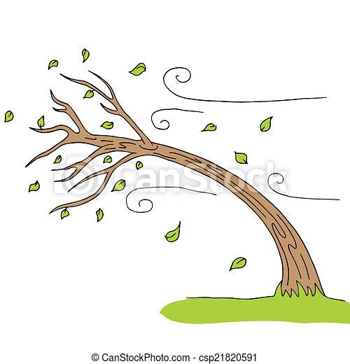 arbre, vent soufflé - csp21820591