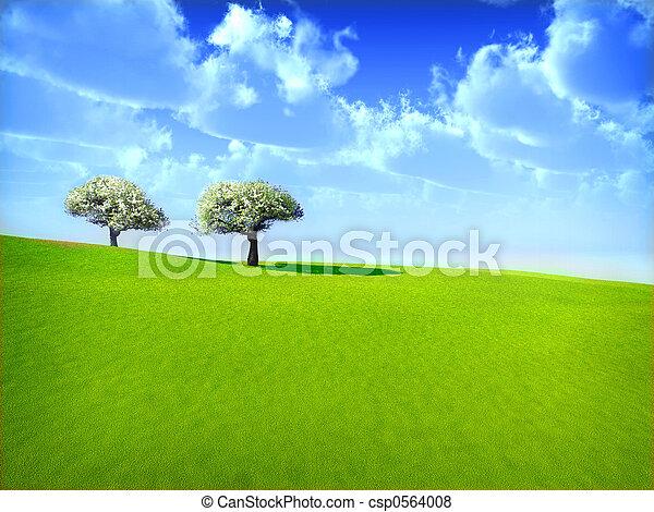 arbres cerise - csp0564008