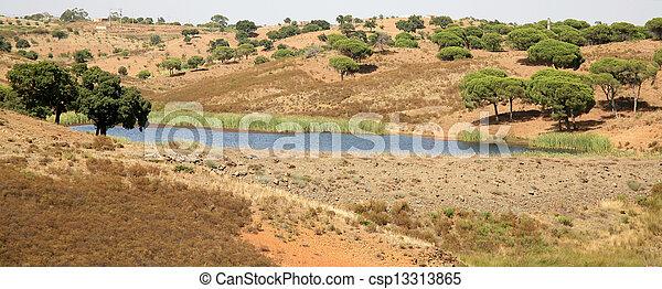 arbres, paysage, portugal, bouchon - csp13313865
