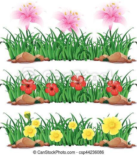Arbusto Flores Verde Ilustracion