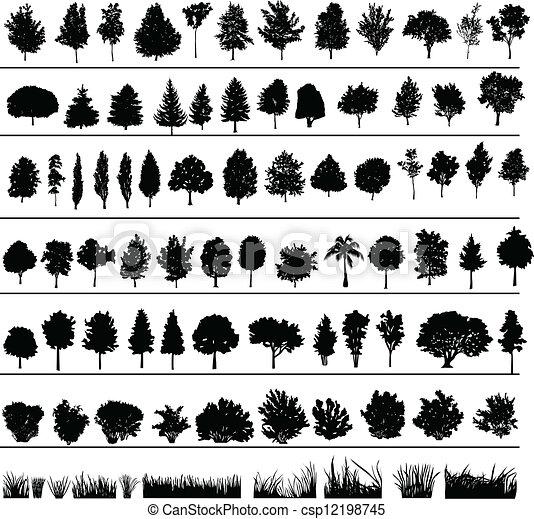 arbustos, árboles, pasto o césped - csp12198745