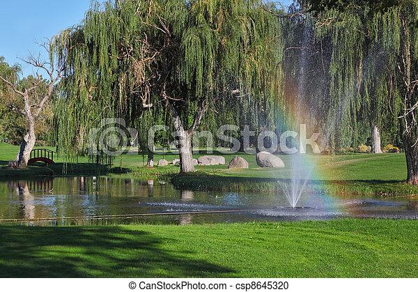 arc-en-ciel, arbres, briller - csp8645320
