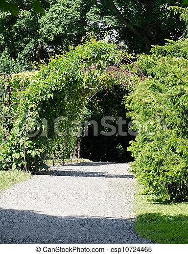 Arc Pathway In Garden   Csp10724465