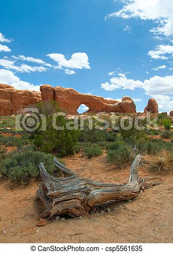 Arches National Park, Utah, USA - csp5561635