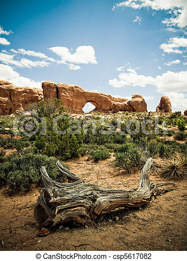 Arches National Park, Utah, USA - csp5617082