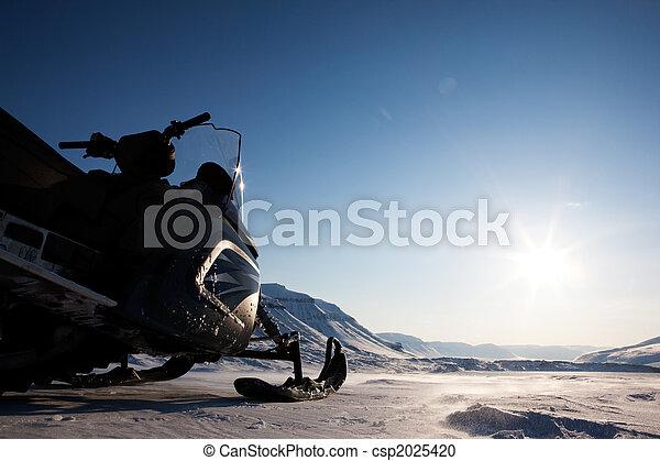 Arctic Landscape - csp2025420