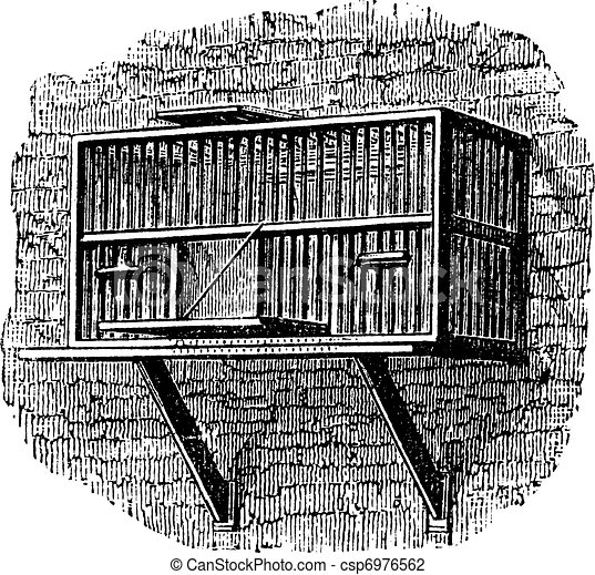 Area or a pigeon cage, vintage engraving. - csp6976562