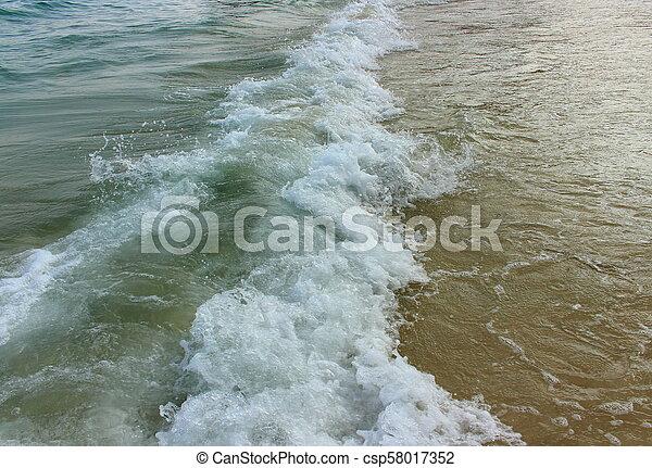 Espuma con una ola de mar en una playa de arena - csp58017352
