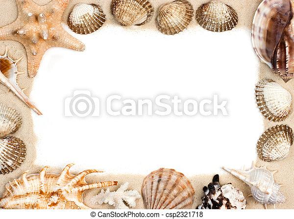 Arena, marco, conchas. Marco, arena, estrellas de mar, conchas marinas.