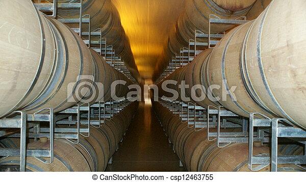Argentina Wine - csp12463755