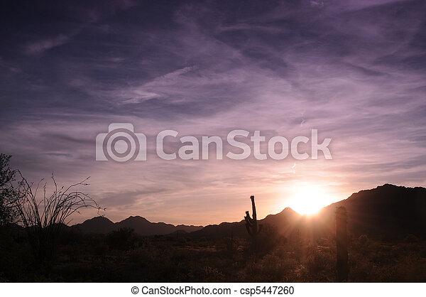Arizona Sunrise - csp5447260
