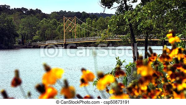 Arkansas' Beaver Bridge - csp50873191