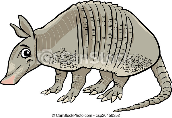 armadillo animal cartoon illustration - csp20458352