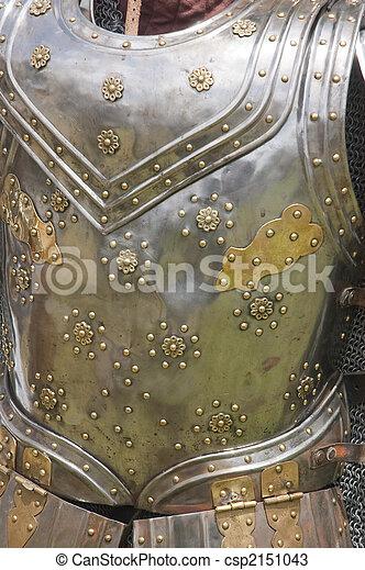 armor closup - csp2151043