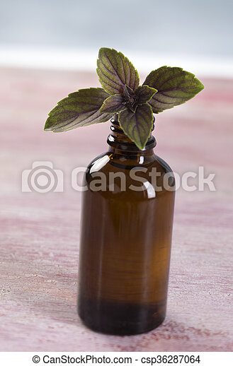 Aromatherapy - Basil essential oil bottle  - csp36287064