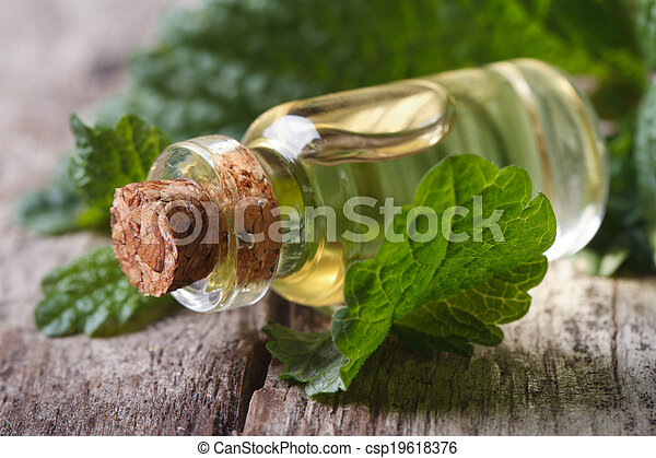 Aromatic oils Lemon balm in a glass bottle on old table - csp19618376