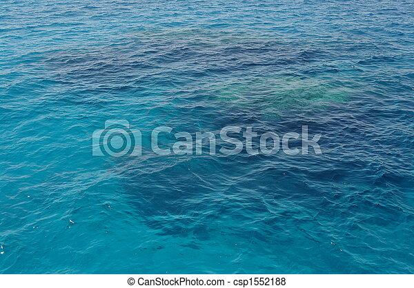 Coral arrecife - csp1552188