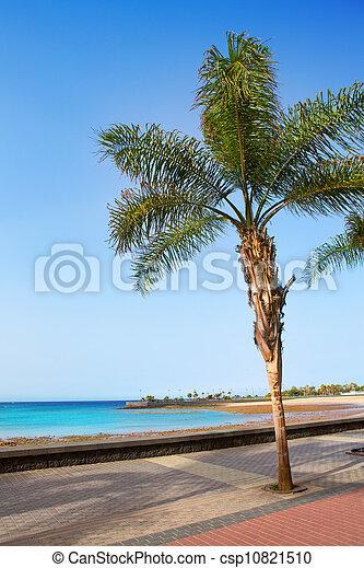 Arrecife Lanzarote Playa del Reducto beach - csp10821510