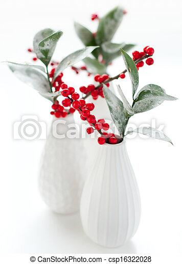Una flor de Navidad - csp16322028