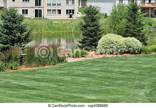 arrière-cour, landscaping - csp4388699