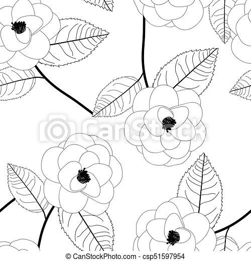 Arriere Plan Fleur Blanche Camelia Fleur Illustration Camelia