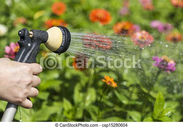 arrosage, jardin fleur - csp15280604