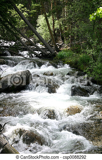 Un arroyo balbuceo - csp0088292