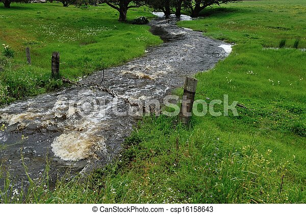 Balbuceando arroyo - csp16158643
