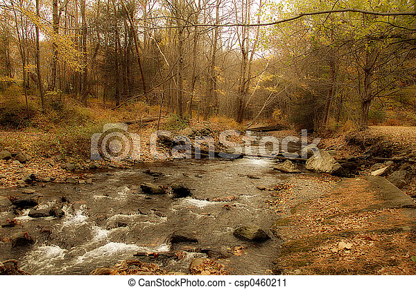 Un arroyo balbuceo - csp0460211