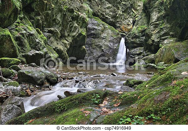 arroyo, cascada, república checa, plata - csp74916949