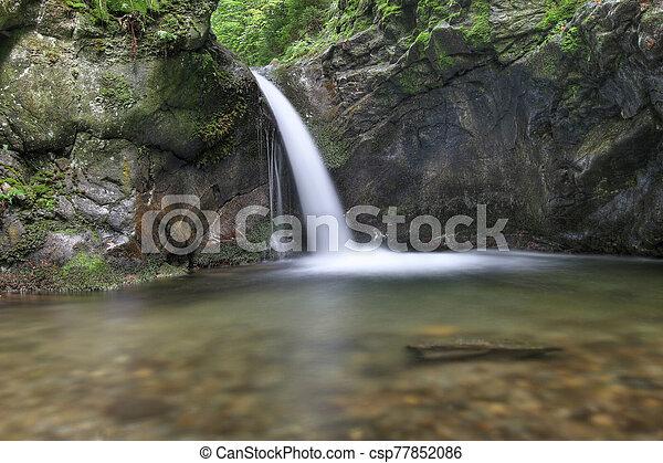 arroyo, plata, república, cascada, checo - csp77852086
